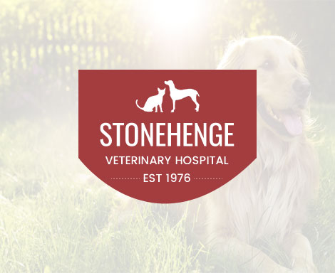 Stonehenge Veterinary Hospital logo